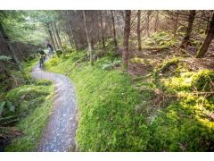 Coed Y Brenin – The UK's first dedicated mountain bike trail centre.